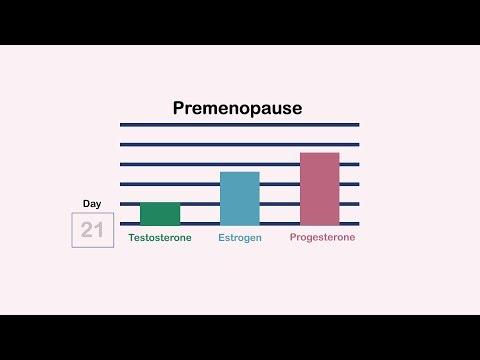 Premenopause, Perimenopause, and Menopause