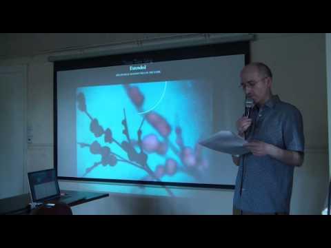 Paul Browne - Junk Culture Talk