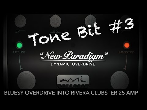 New Paradigm Overdrive - Tone Bit #3 - Bluesy overdrive in clean Rivera Clubster combo