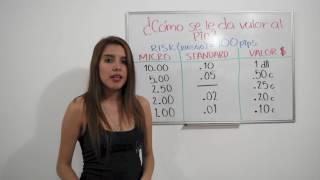 BÁSICOS DEL PIP - Por Claudia Bijman