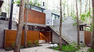 Gambar cover Beautiful Modern House Design Built Surrounded by Its Original Uncut Trees