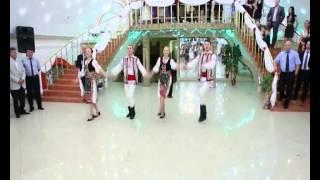 Dansatori la nunti si cumatrii 068218580