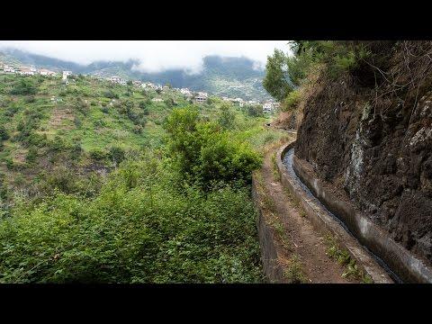 Levada do Castelejo | Madeira