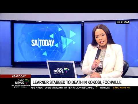 Grade 8 learner stabbed to death in Kokosi, Fochville