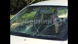 Автолюбитель с тридцатилетним стажем сбил пешехода на зебре в Хабаровске. MestoproTV