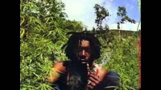 Watch Peter Tosh No Sympathy video