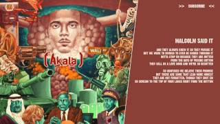 Akala - Malcolm Said It - ( lyric video )
