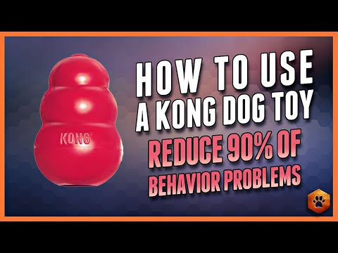 How to Use a Kong Dog Toy  90% of Behavior Problems Eliminated