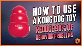 How to Use a Kong Dog Toy  90% of Behavior Problems Reduced