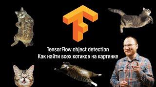 TensorFlow object detection. Как найти всех котиков на картинке
