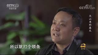 《遍地英雄》 20200508 大山里的春天——刘超 CCTV农业