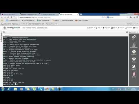 unix chroot terminal online
