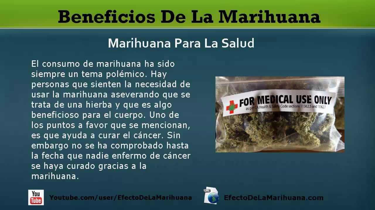 Como usar la marihuana para adelgazar