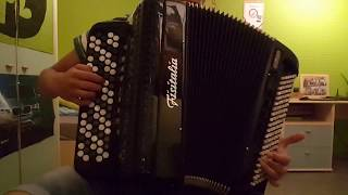 Believer (Imagine Dragons) ~ Accordion Cover