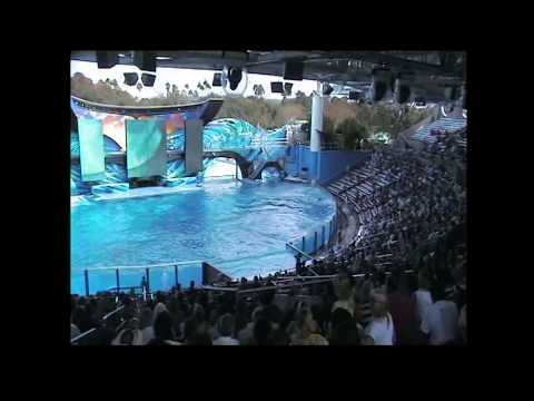 California Travel Destinations & Attractions | Visit Seaworld San Diego dolphin Show 2014