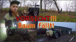 FarmVLOG#165 - VORSICHT!!! Baum fällt!