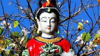 Mở Kinh Địa Mẫu - Mẹ Gia Hộ Hết Nghèo Khổ, Tai Qua Nạn Khỏi, Phúc Lộc May Mắn