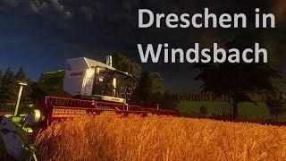 Hi Leute, hier ein kleines Video über das Weizen ernten in Windsbach. Am Start waren ein Claas Lexion 750 Terra Trac, Fendt 516 Vario, John Deere 7530, MB-Trac 1800 Intercooler und die passenden Gespanne. Ich hoffe es gefällt euch. Über eine Bewertung ode