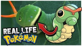 5 Real Life Pokémon You Never Knew Existed