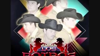 Mix El LLanero II - Los Potros Del Sur