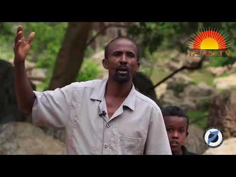 Warbixin Kooban Sanaag, Somalia