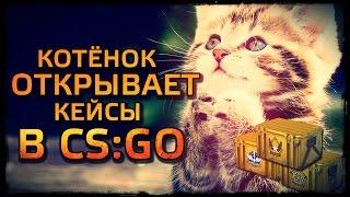 КОТЁНОК ОТКРЫВАЕТ КЕЙСЫ В CS:GO