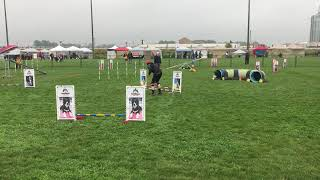 Maggie 2019 AAC Nationals Gamble 104 points