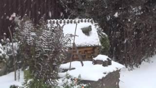 В Любомлі завірюха. 29 листопада 2016 року.(Зима цього року навідалася раніше календарних термінів, і вже не вперше. Чи надовго вистачить потуги і в..., 2016-11-29T20:26:29.000Z)