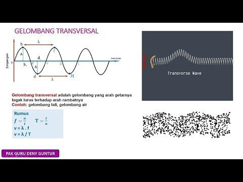 Gelombang Transversal Dan Gelombang Longitudinal Youtube