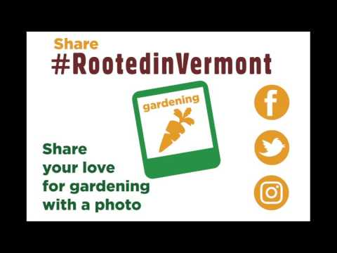 How Vermonters Can Celebrate Being Rooted in Vermont
