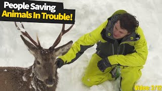 Kind and touching moments: people saving wild animals in trouble. | Wild Animal Rescue