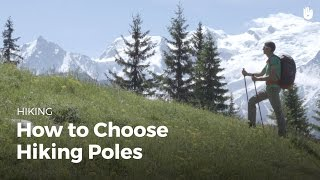 How to Choose Trekking Poles | Hiking