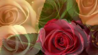 Bollywood Songs of 2000 2008   Part 1 2  Jukebox  HQ