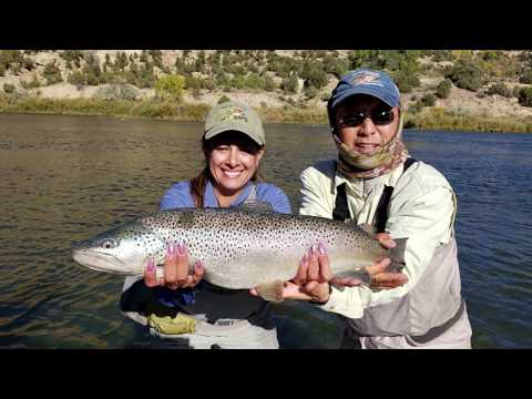 San Juan River Fantastic Fly Fishing Baetis Bend March 2020