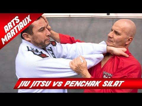 SELF DÉFENSE / MMA : MÊME COMBAT !