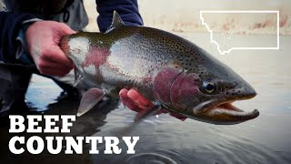 BEEF COUNTRY: Montana Fly Fishing