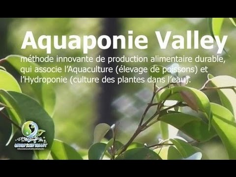 Clip Crowdfunding Aquaponie Valley