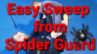 Easy Sweep from Spider Guard! Toro BJJ Move of The Week