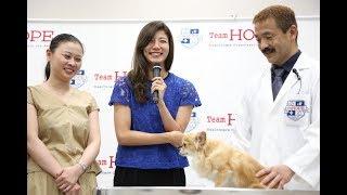9月5日に獣医師団体『Team HOPE』が都内で開催した「ペットの健康寿命を...