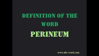 """Definition of the word """"Perineum"""""""