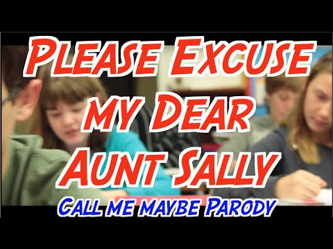Please Excuse my Dear Aunt Sally (The Order of Operations)