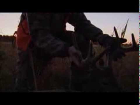 Anticosti Island Velvet Buck - Whitetail Hunting