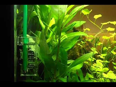 Dennerle bio co2 nano flipper
