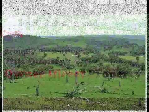 Rural Acreage For Sale Gundagai Wagga Canberra Sydney