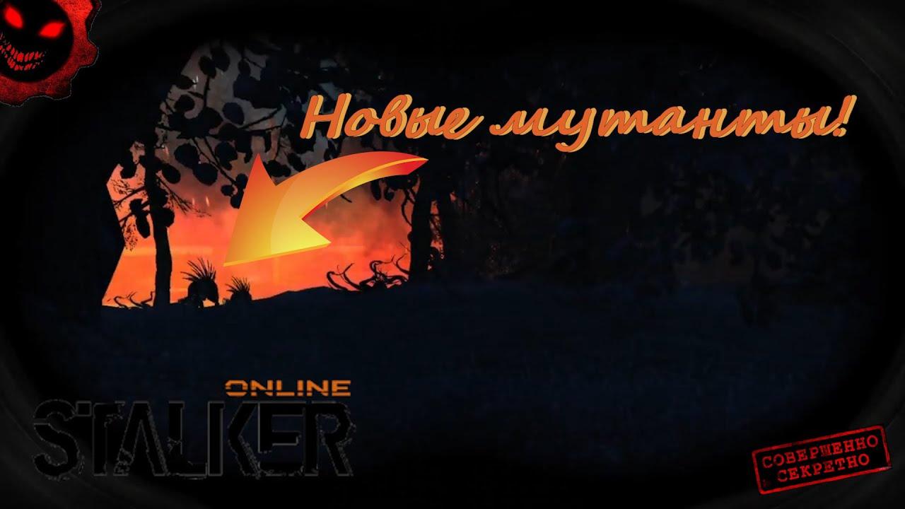 🔴 Stalker Online   ДЛЯ ТЕХ КТО В БАНЕ   ЧЁРНЫЙ ЛЕС. ТИЗЕР.  Stay Out