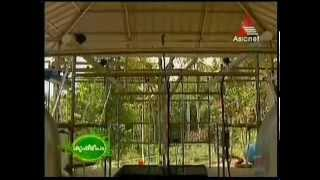 Freestall Dairy Farm in Private Sector - First Farm in Kerala