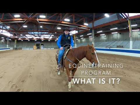 Laramie County Community College Equine Training Program