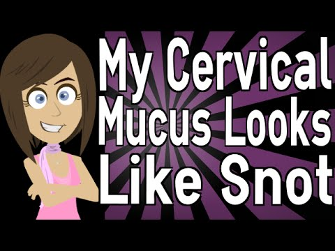 My Cervical Mucus Looks Like Snot