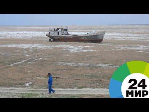 Аральское море возвращается к жизни - МИР 24