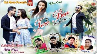 Pahari Video Song 2018   Mein Tere Bin Adhoora Sa   Anil Negi